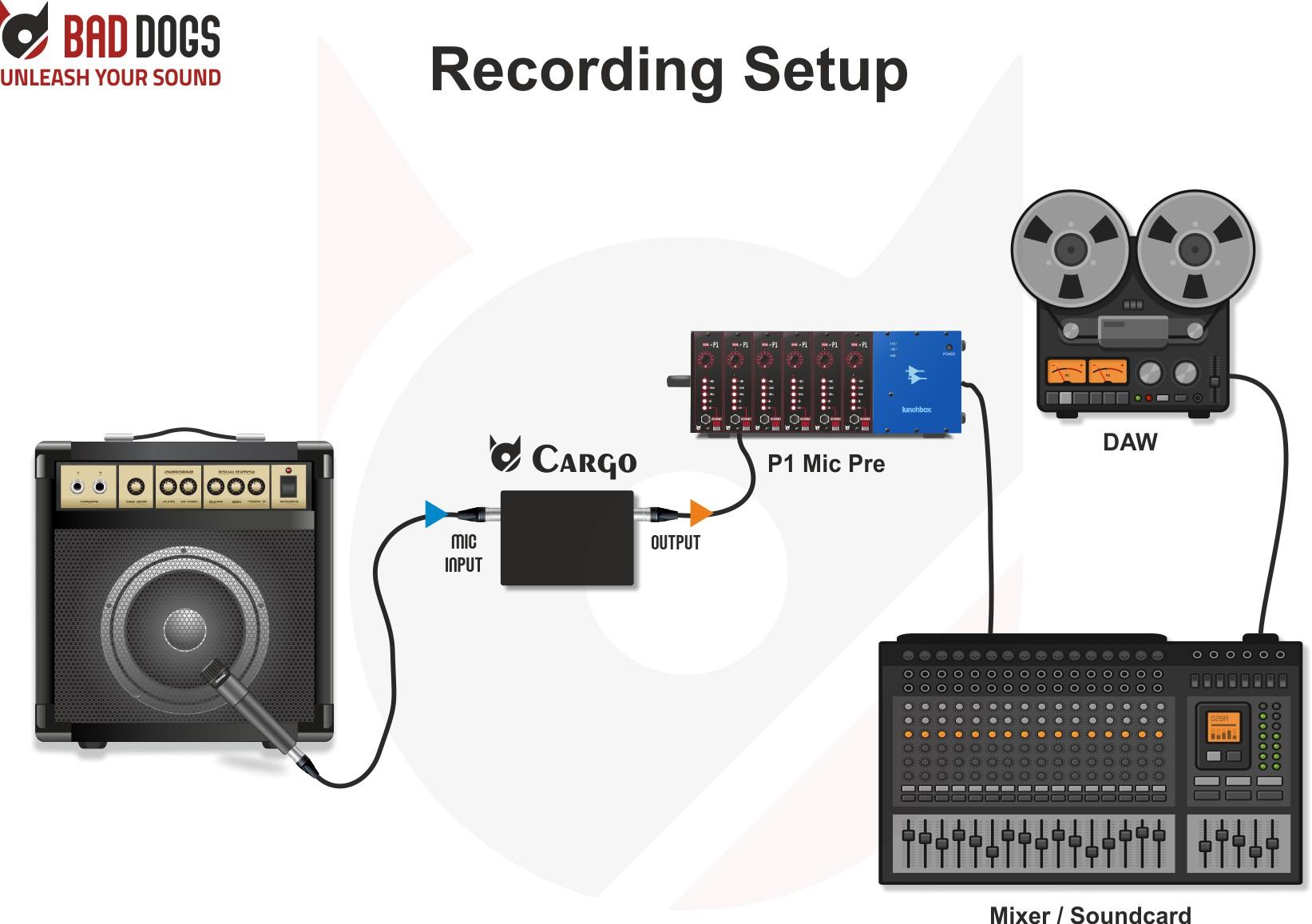 Cargo use case recording setup
